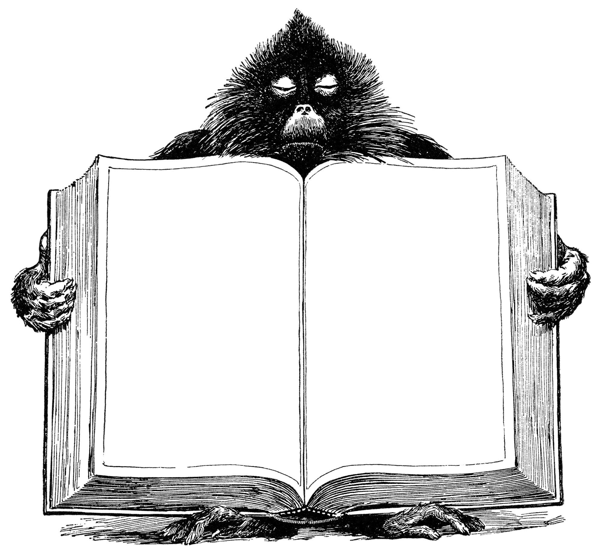 baboon holding book, unique vintage clipart, black and white.