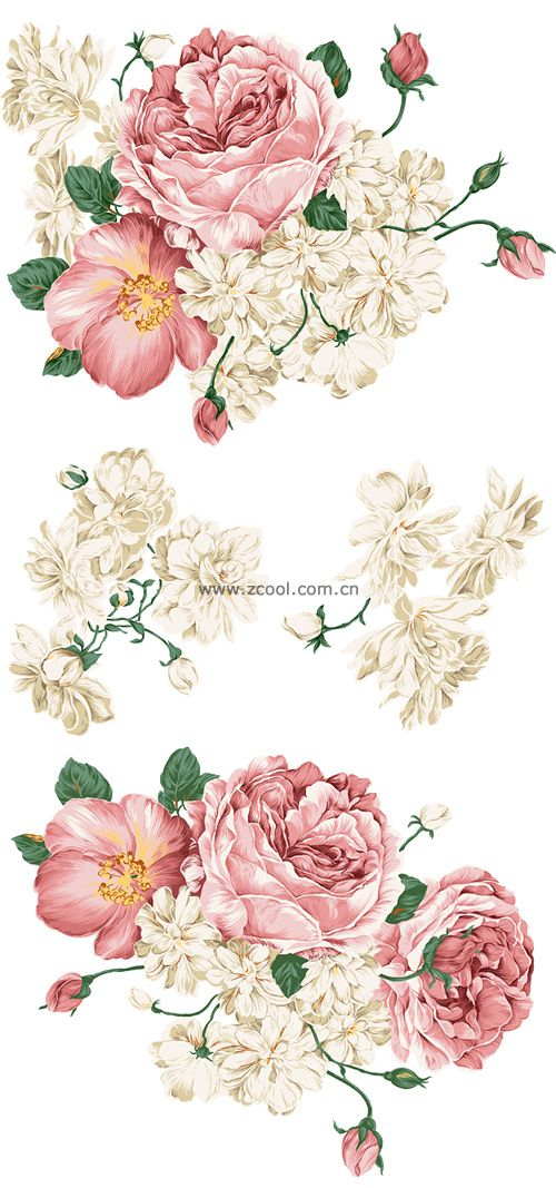 Beautiful hand drawn style peony flower PSD layered material.