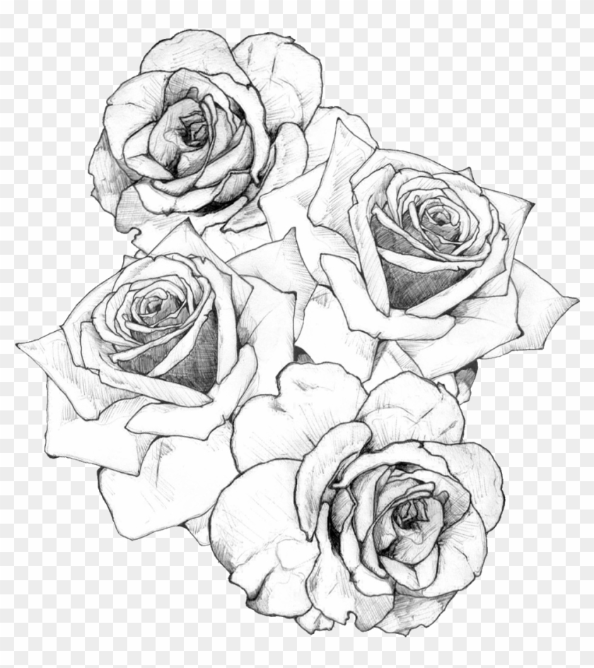 White Rose Clipart Tumblr Transparent.