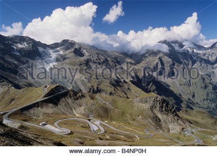 Edelweiss Stock Photos & Edelweiss Stock Images.