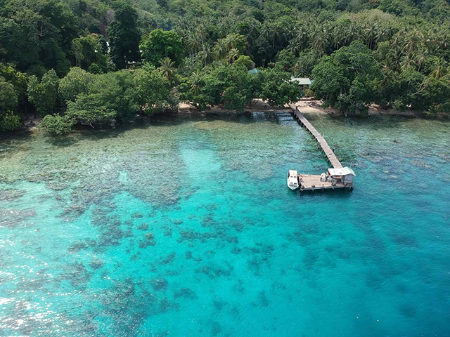 Tawali dive resort download free clip art with a transparent.