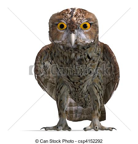 Clip Art of Tawny Owl Bird. 3D rendering and shadow over white.