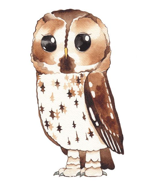 1000+ images about Owls on Pinterest.