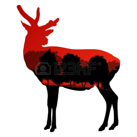 292 Taxidermy Cliparts, Stock Vector And Royalty Free Taxidermy.