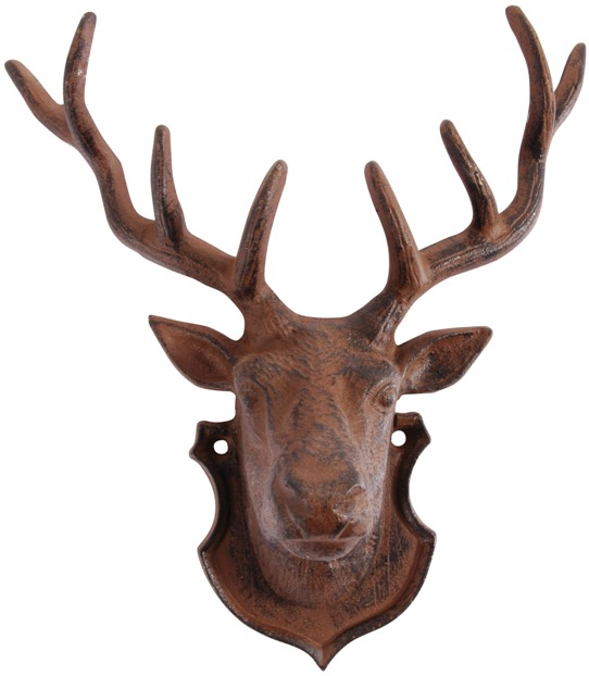 Mounted Deer Head: Taxidermy.