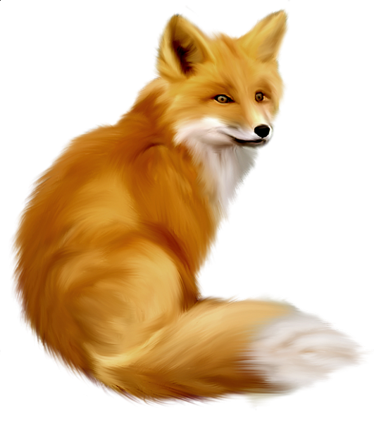 Painted Fox Clipart.
