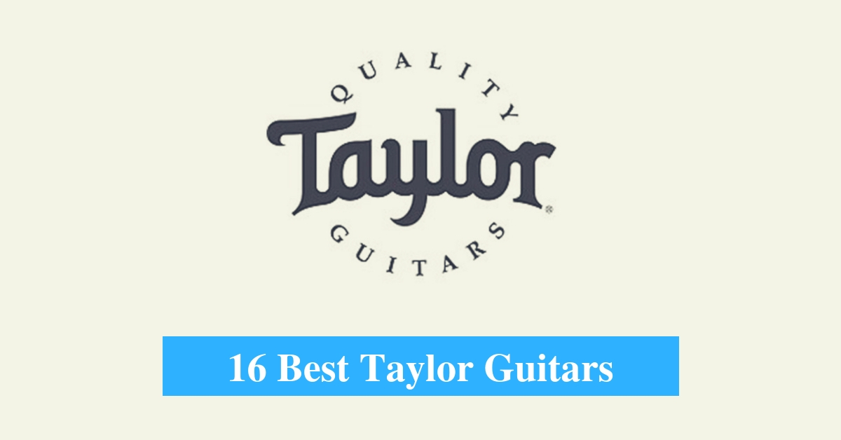 16 Best Taylor Guitar Reviews 2019.