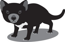 Search Results for Tasmanian Devil.