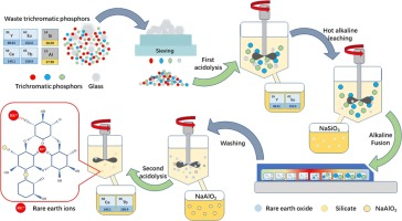 Multiscale recycling rare earth elements from real waste.