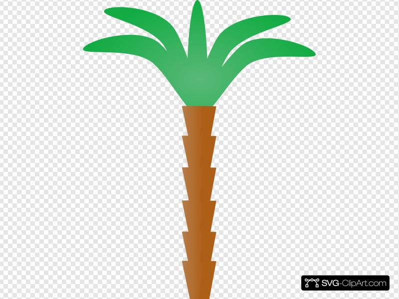 Cartoon Palm Tree Clip art, Icon and SVG.