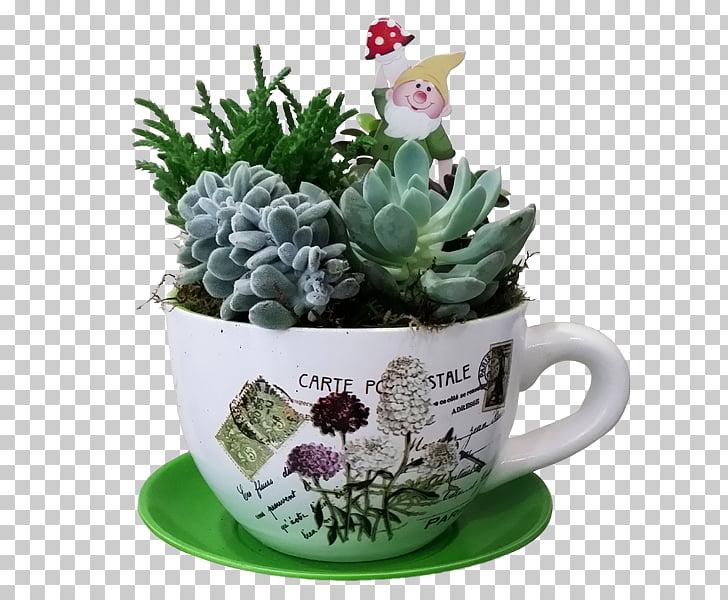 Flower Cactaceae Succulent plant Echinocactus, flower PNG.