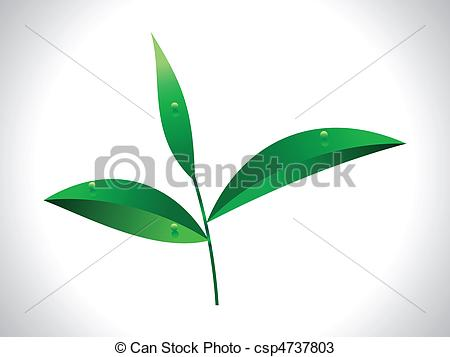 Tea leaf clipart clipground tea leaf clipart and stock illustrations 7620 tea leaf vector thecheapjerseys Image collections