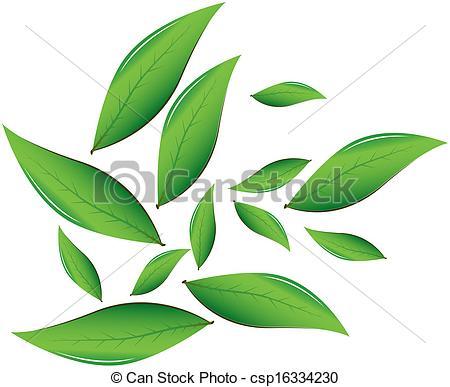 Tea leaves Clipart and Stock Illustrations. 6,734 Tea leaves.