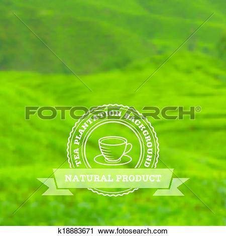 Clipart of Tea plantation vector background k18883671.