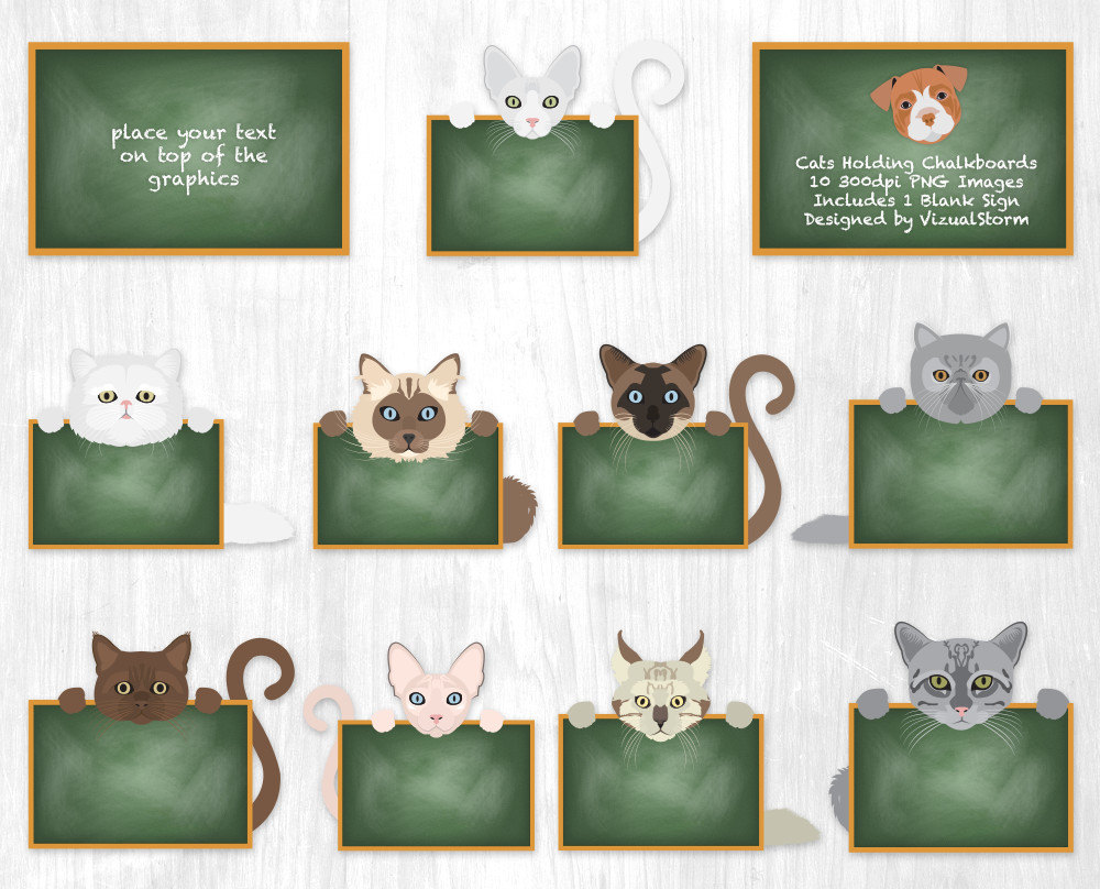 Cute Cat Classroom Clipart Cats Holding Chalkboards School Clipart.