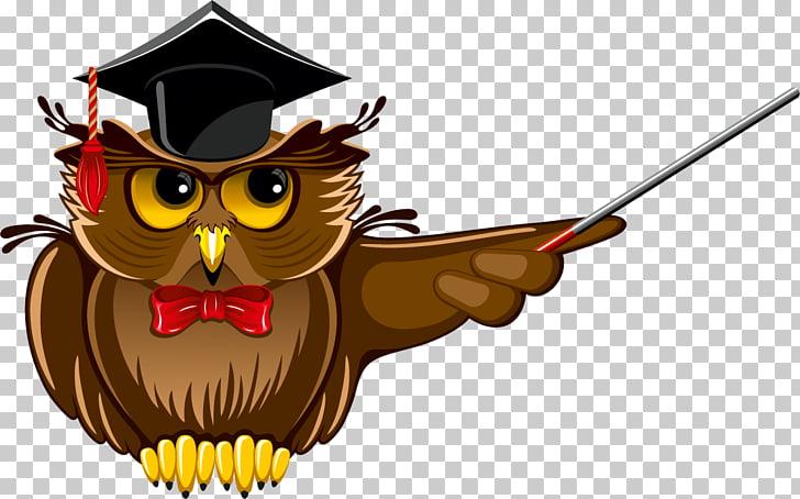 Owl Teacher School , owl PNG clipart.