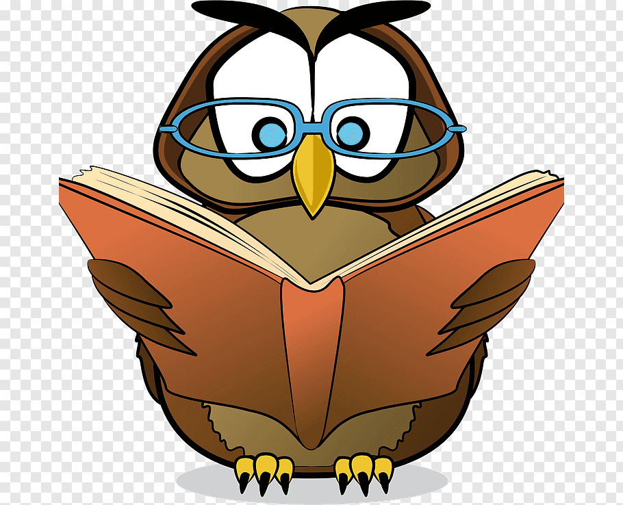 Owl, Reading, Education , Teacher, National Primary School.