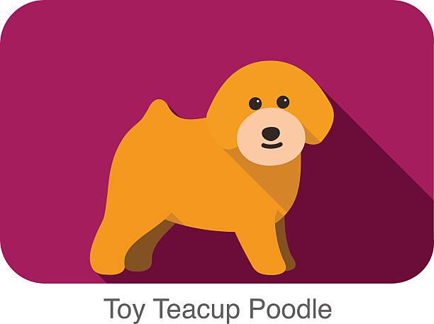 Teacup Poodle Clip Art, Vector Images & Illustrations.