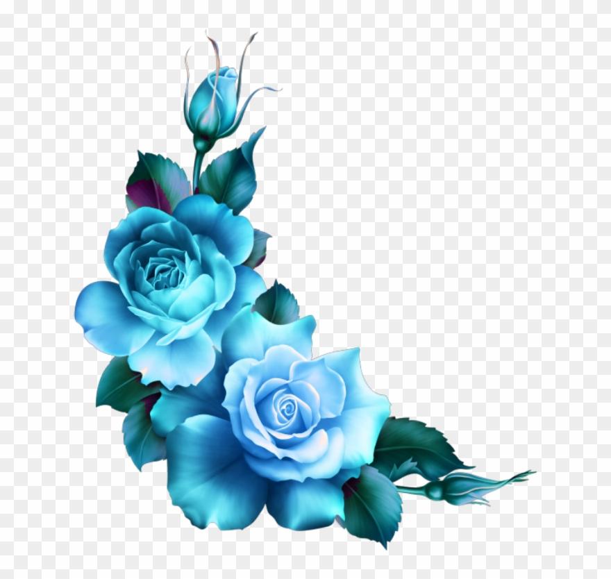 Mq Blue Roses Flowers Flower Rose Border Borders.