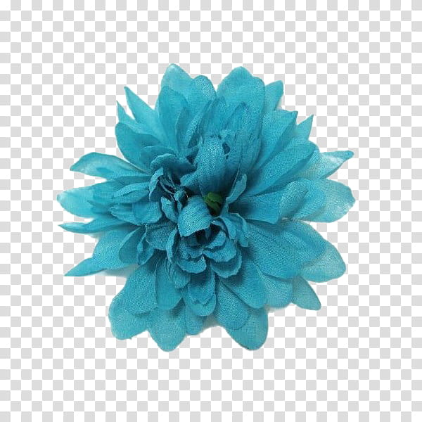 Flower power s, faux teal dahlia flower art transparent.
