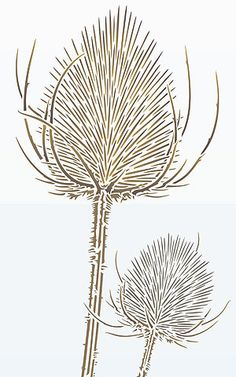 The Large Wild Teasels Stencil stencilled in Butterscotch, Latte.
