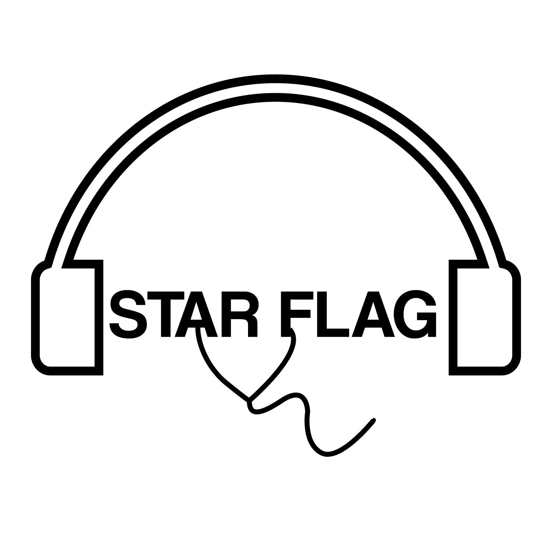 Playful, Modern, Electronics Logo Design for STAR FLAG by.