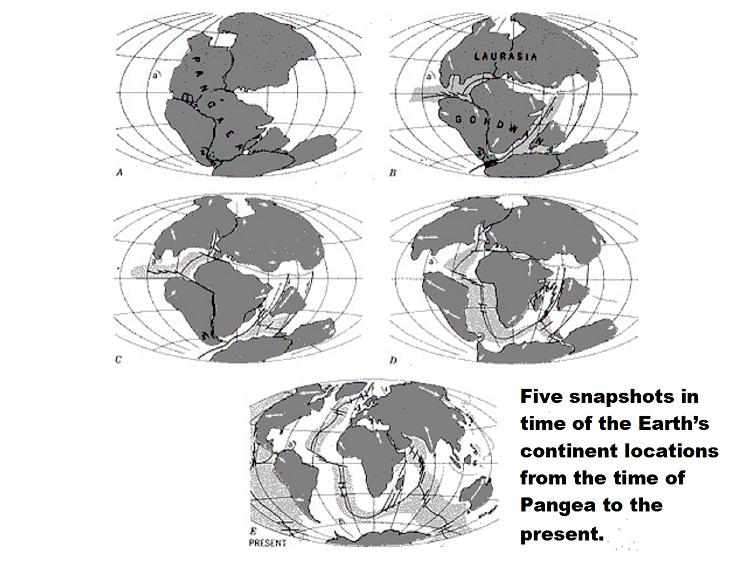 Catastrophic Plate Tectonics.