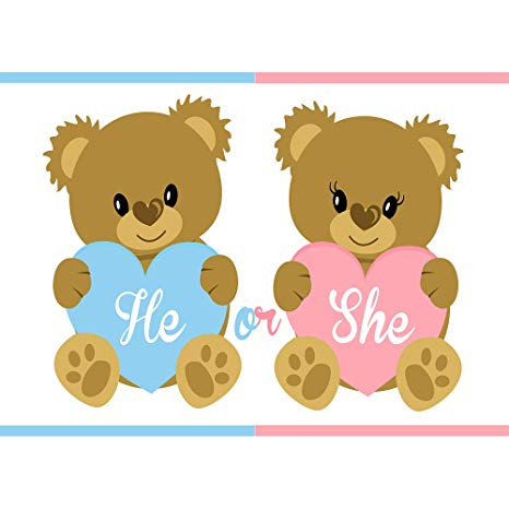Amazon.com : He or She What Will It Bee Backdrop 7x5ft Baby.