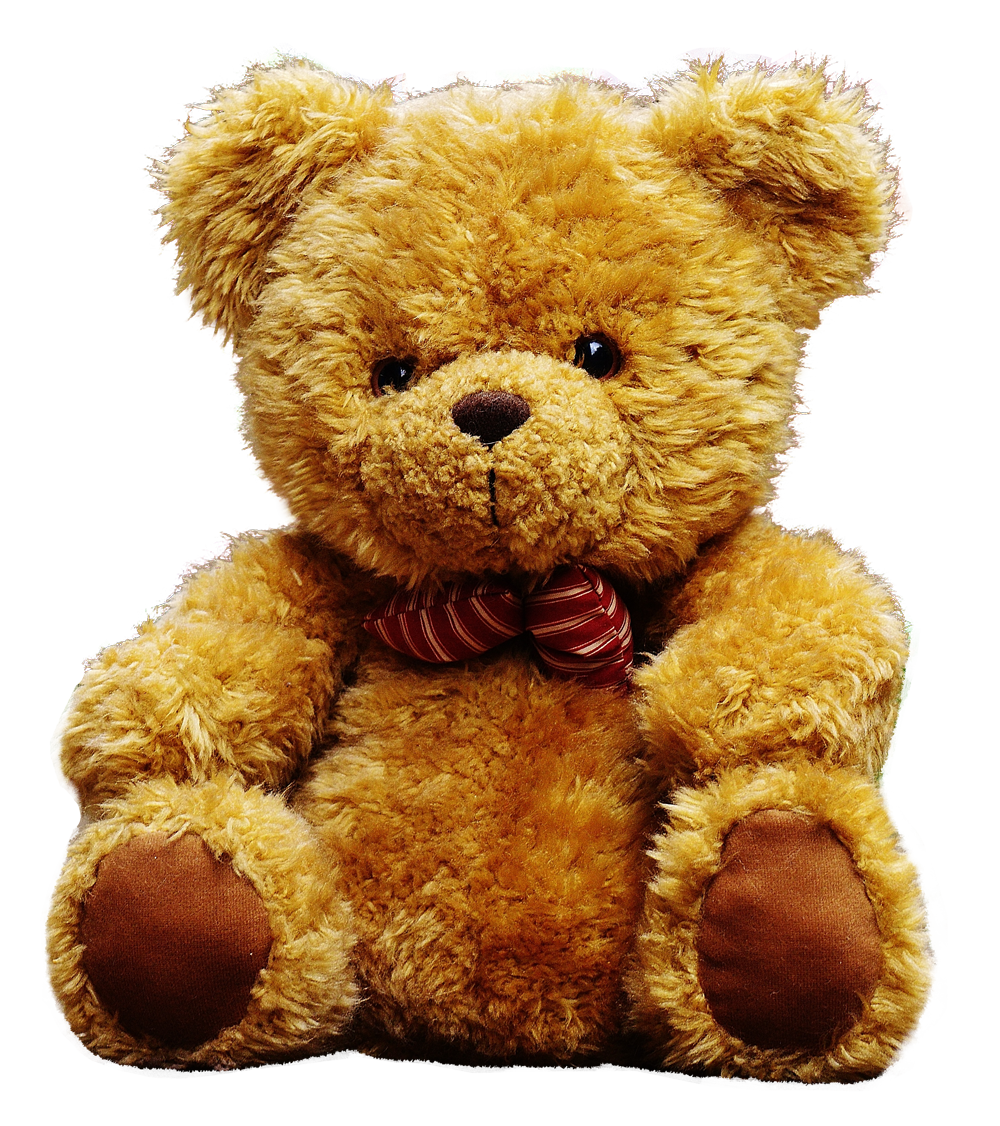 Teddy Bear PNG Image.