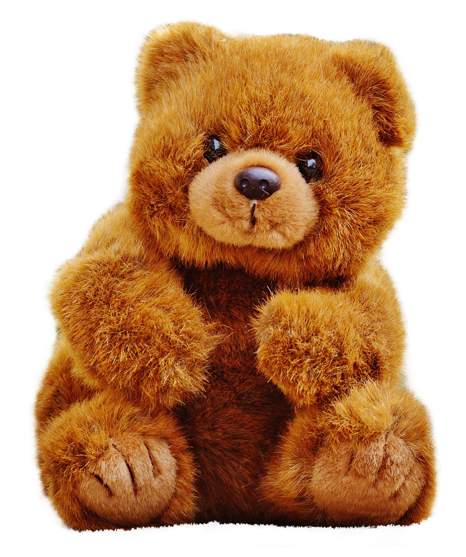 Teddy Bear PNG Image.
