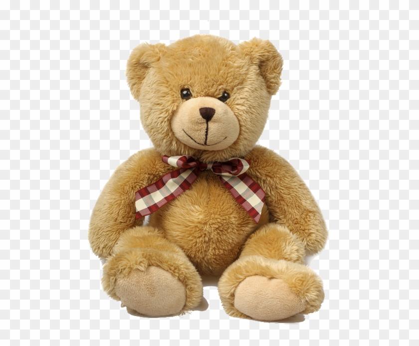 Teddy Bear Png.