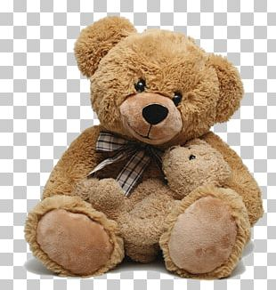Teddy Bear PNG Images, Teddy Bear Clipart Free Download.