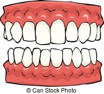 Teeth Illustrations and Clipart. 84,650 Teeth royalty free.