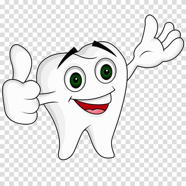 Dentistry Human tooth , cartoon tooth transparent background.