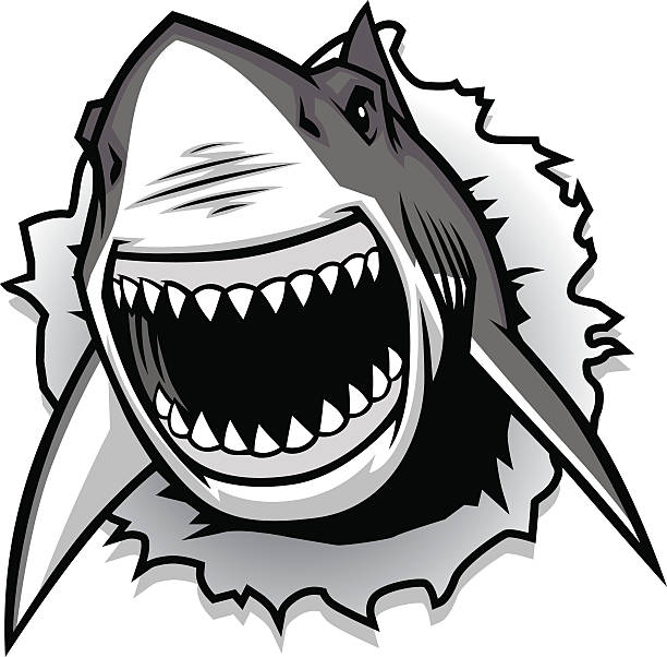 teeth shark mouth clipart 20 free Cliparts | Download ...