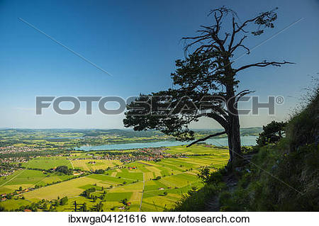 Stock Images of View from Tegelberg mountain massif, Fussen.