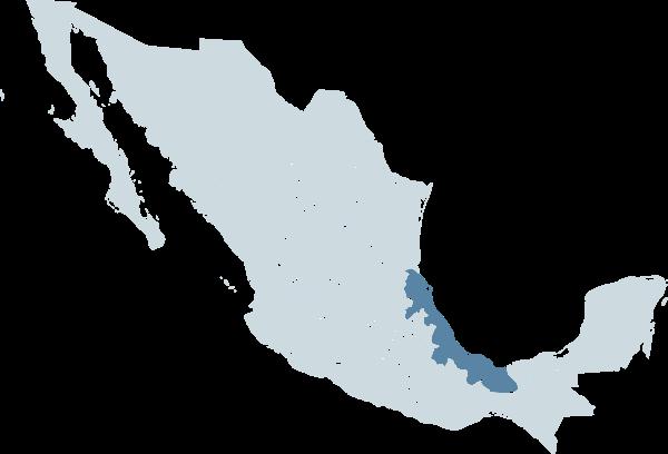 Anexo:Municipios de Veracruz.