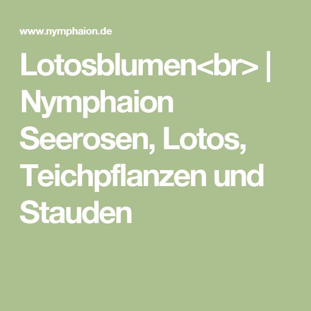 1000+ ideas about Teichpflanzen on Pinterest.