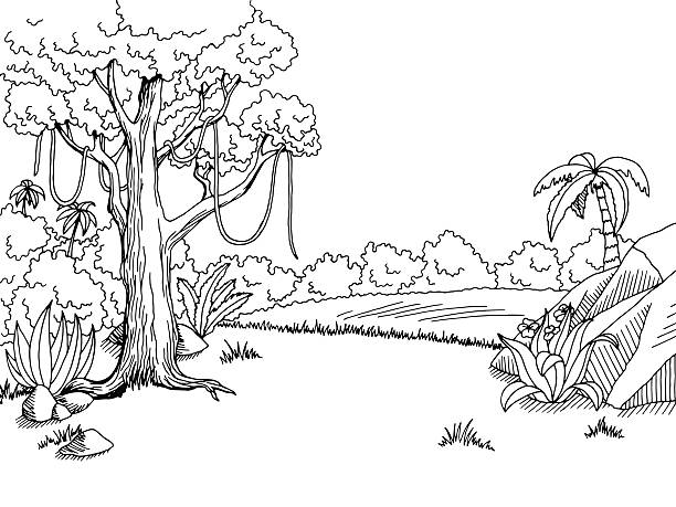Jungle Trees Clipart Black And White.