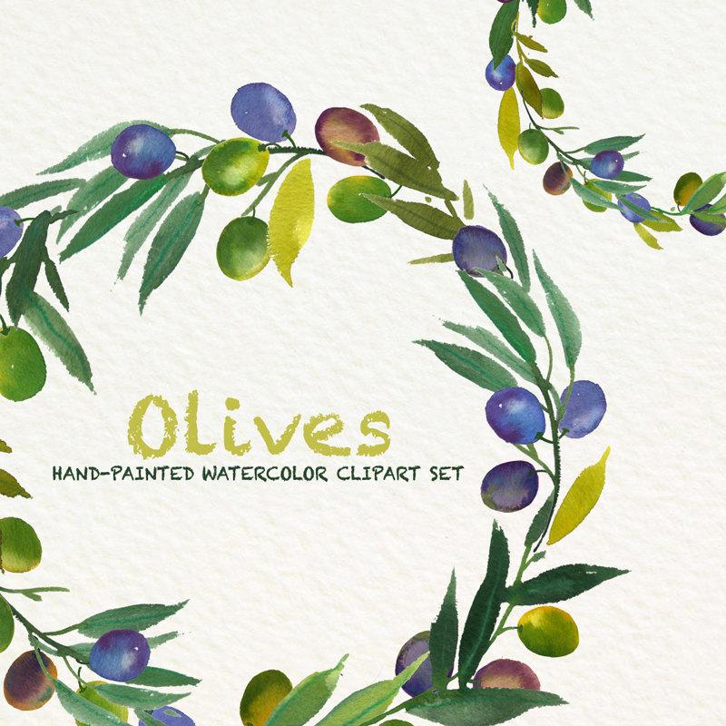 Olives Watercolor clip art, hand drawn. Light green, tender green.