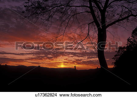 Stock Photo of TN, Tennessee, Great Smoky Mountains National Park.