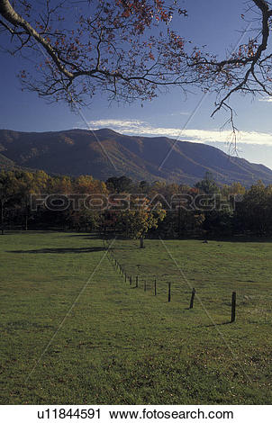 Stock Photography of TN, Tennessee, Great Smoky Mountains National.
