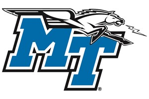 Middle Tennessee Branding, Logos and Music.