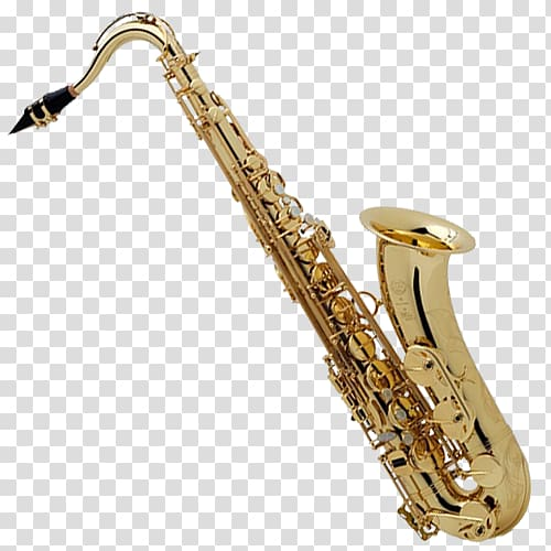 Tenor saxophone Henri Selmer Paris Alto saxophone Reference.