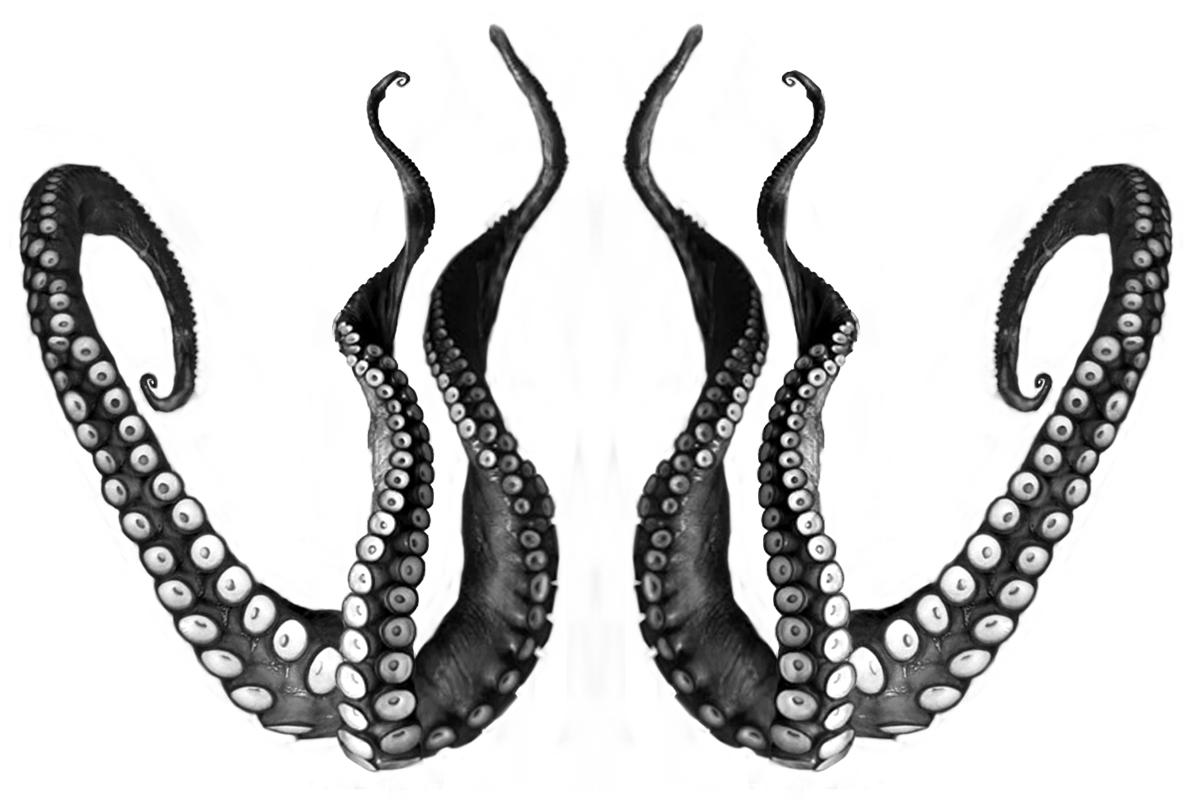 Octopus tentacles clipart.