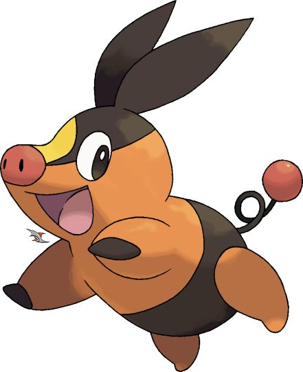 1000+ images about tepig on Pinterest.
