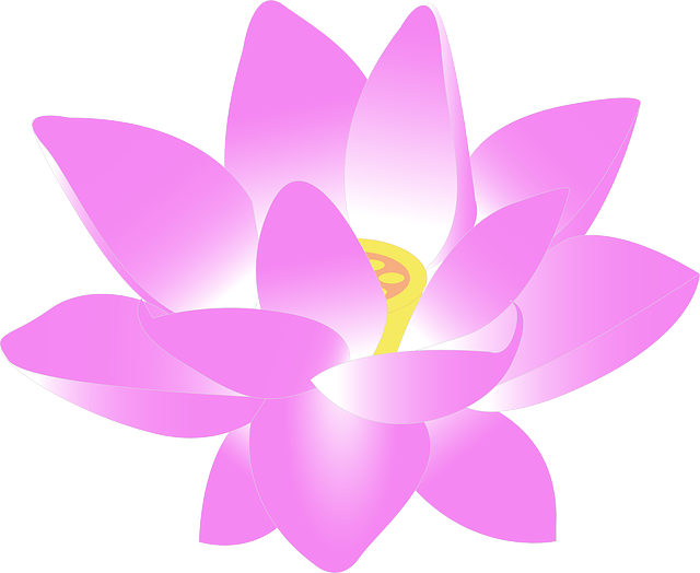 Free vector graphic: Flower, Water Lily, Lily, Lotus.
