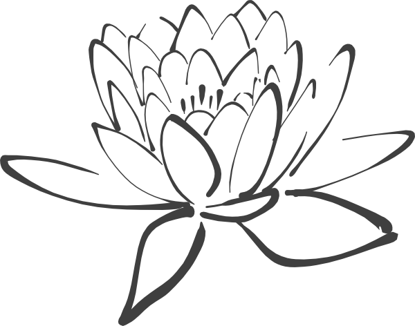 Lotus Outline.