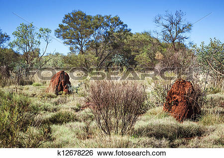 Stock Images of australia termite hill k12678226.