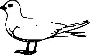 Terns clipart #2